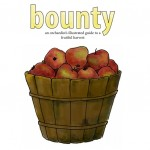 BountyPreview
