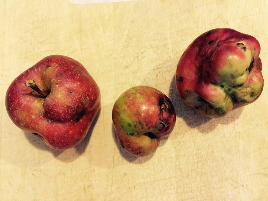funky apples